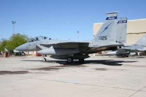 FL ANG F-15_1