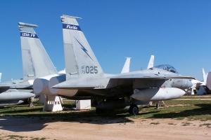 FL ANG F-15_2